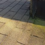 moss growing on roof, Dowell Roofing, Murfreesboro Roofers